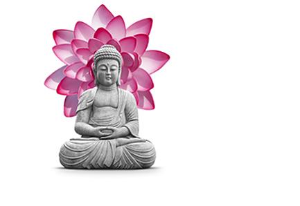 yoga-buddha--seminare